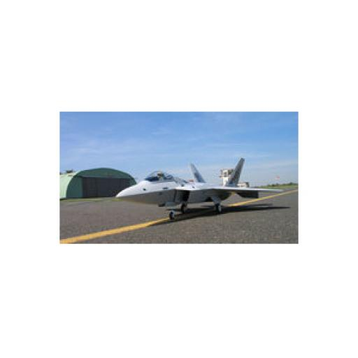 ZN Line F-22 Raptor